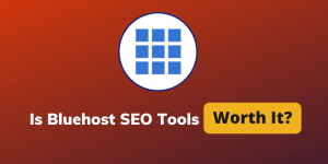 Bluehost SEO Tools: Do We Really Need This Addon?